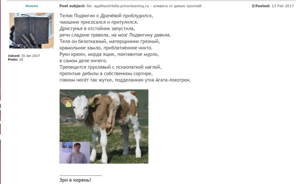 agathachristie.pricecleaning.ru - клеветники и мошенники,  стихи про дебилов 3.png