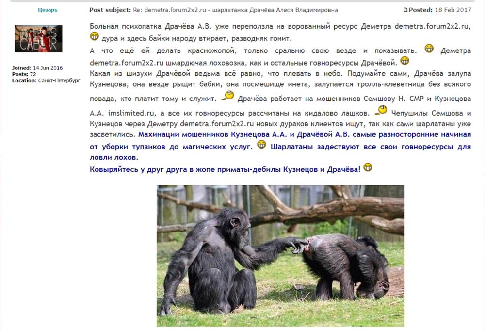 demetra.forum2x2.ru - шарлатанка Драчёва Алеся Владимировна 3.png